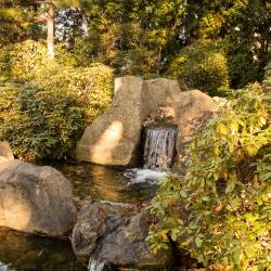 Wasserfall, Japanischer Garten - Bad Langensalza