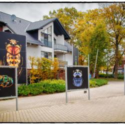 Outdoor-Ausstellung in Zingst