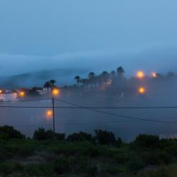 Gomera - Las Hayas im Nebel
