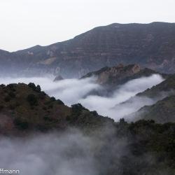 Nebel auf Gomera
