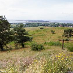 Hiddensee vom Dornbusch