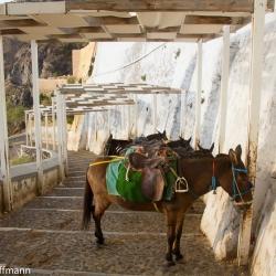 Santorini - Fira - Hafentreppen