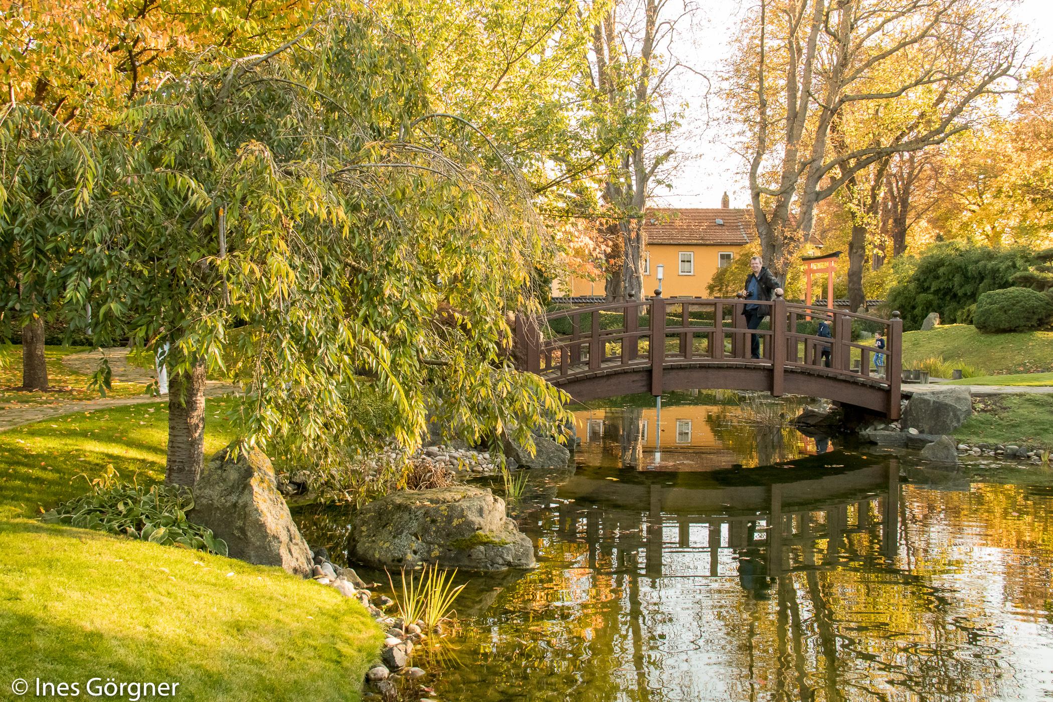 Japanischer Garten Garten Der Glückseligkeit In Bad Langensalza