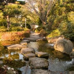 Japanischer Garten - Bad Langensalza